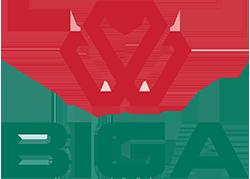 Logo Biga Vietnam